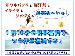 ワキ汗橘01.jpg