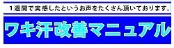 ワキ汗橘02.jpg